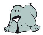 JW Pet® Hol-ee Bone Squeaker Kicsi