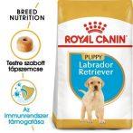 Royal Canin Labrador Retriever Puppy 3 kg + Ajándék Royal canin jutalomfalat tartó