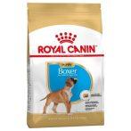 Royal Canin Boxer Puppy 3 kg + Ajándék Royal canin jutalomfalat tartó